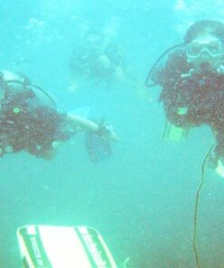 diving in sesimbra