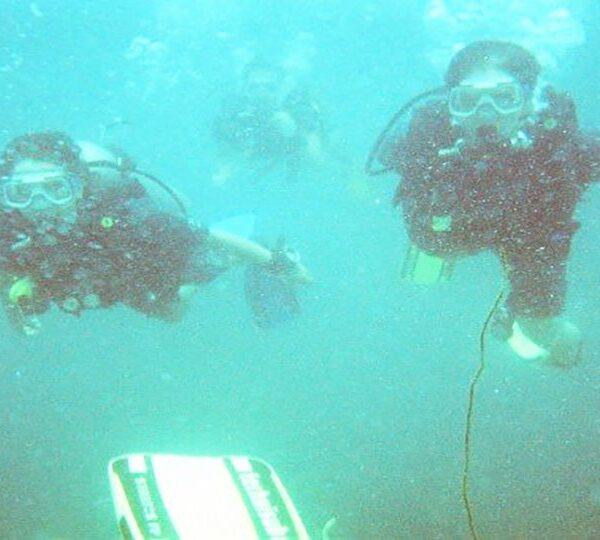 Diving Sesimbra
