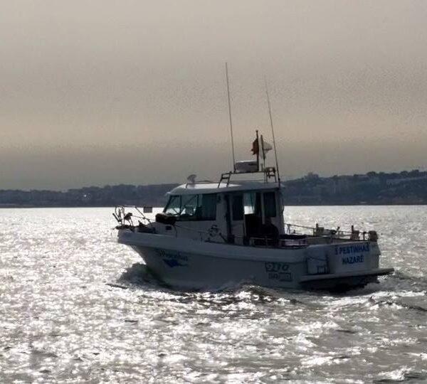 Lisbon Private Fishing Tour