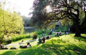 The Calouste Gulbenkian Garden