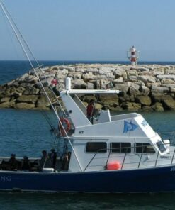 reef fishing albufeira