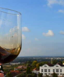 Quinta Do Piloto- Wine tasting and Guided Tour - Lisbon