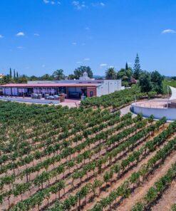 Winery Tour and TastingAlbufeira