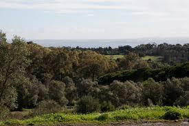 Monsanto Forest Park
