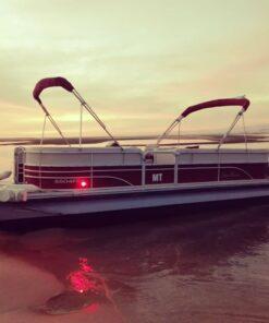 Eco Boat Tour Faro